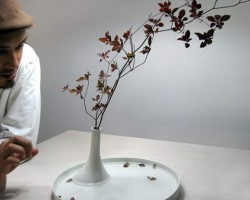 Floating Flower Vase By Studio Note