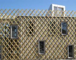 Wooden Trellis Facade
