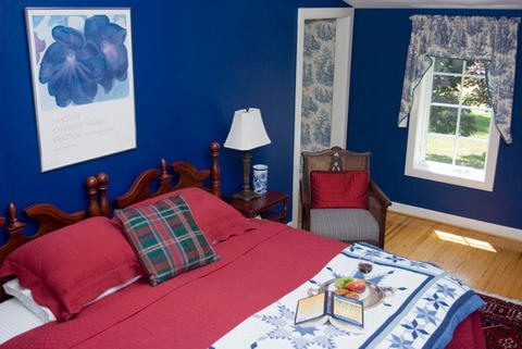 Interior Ideas Colored walls blue