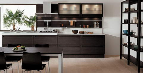 Snaidero Kitchen Inspiration wenge glass