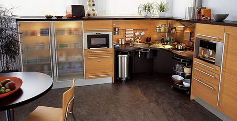 Snaidero Kitchen wenge glass wood